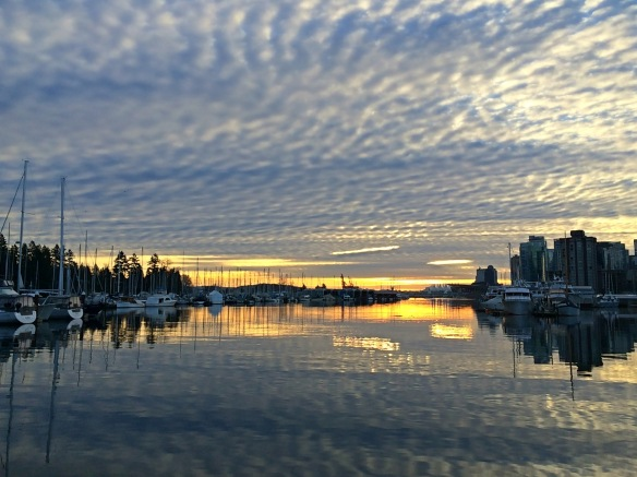 coal harbour clouds